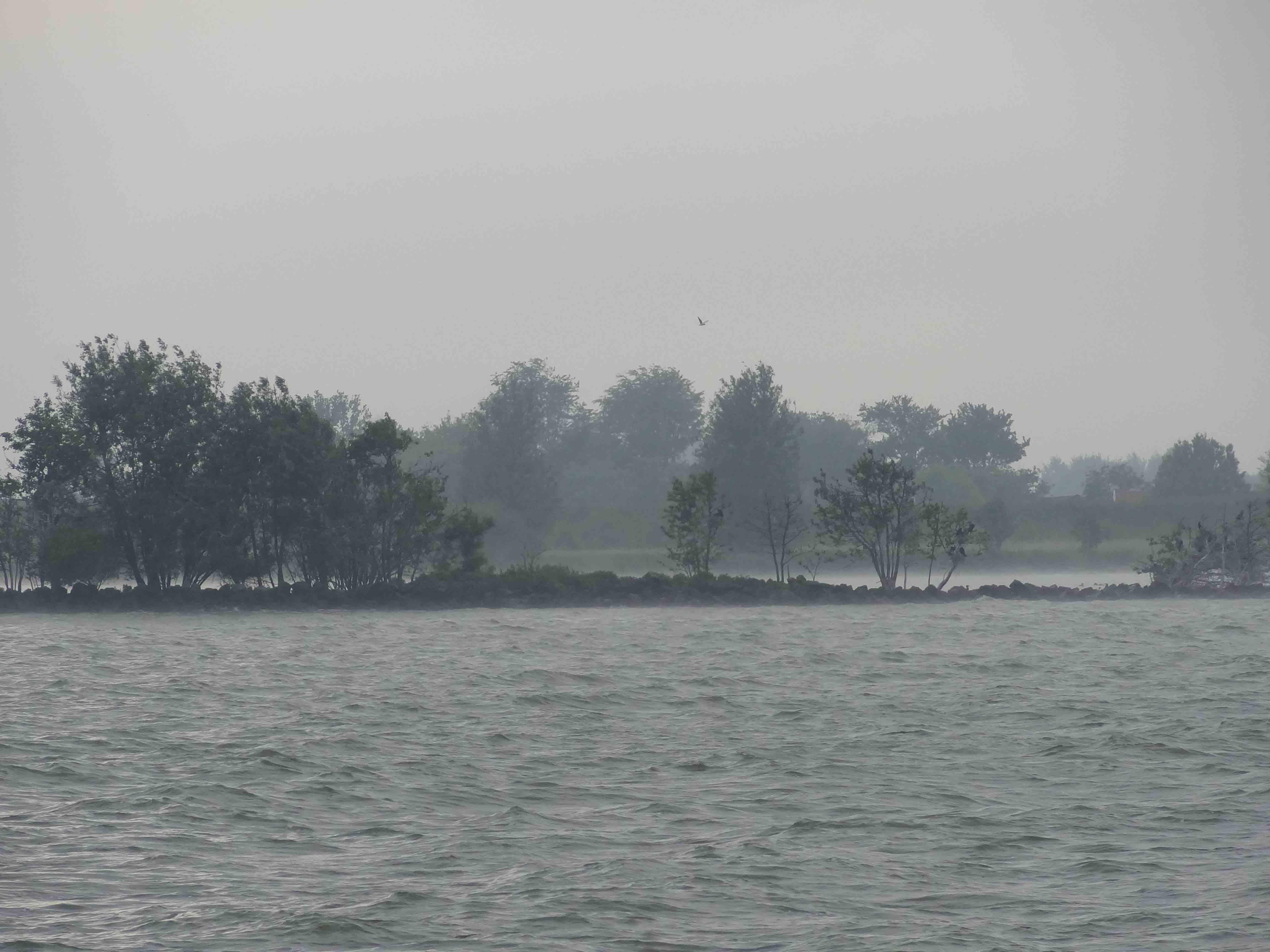 Aufziehender Nebel in der Ankerbucht zwichen Anike und Medemblick