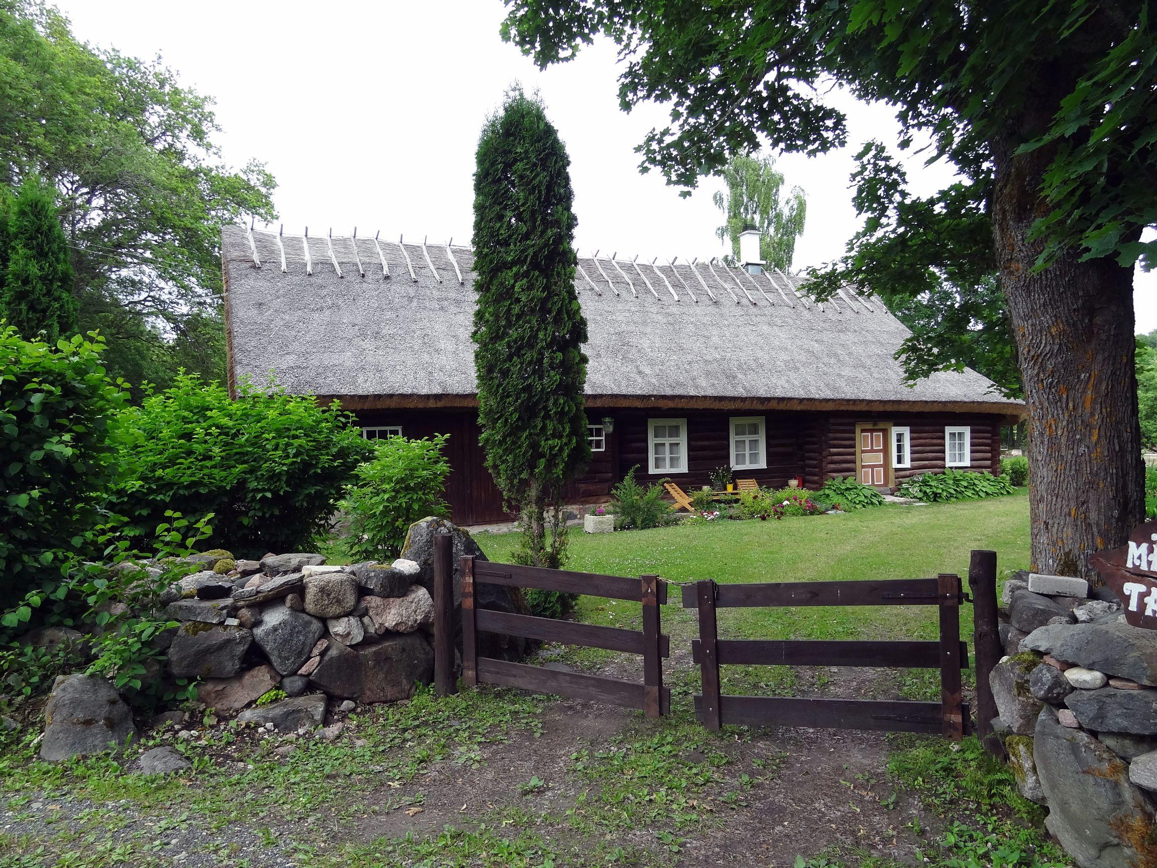 Häuser mitten im Wald