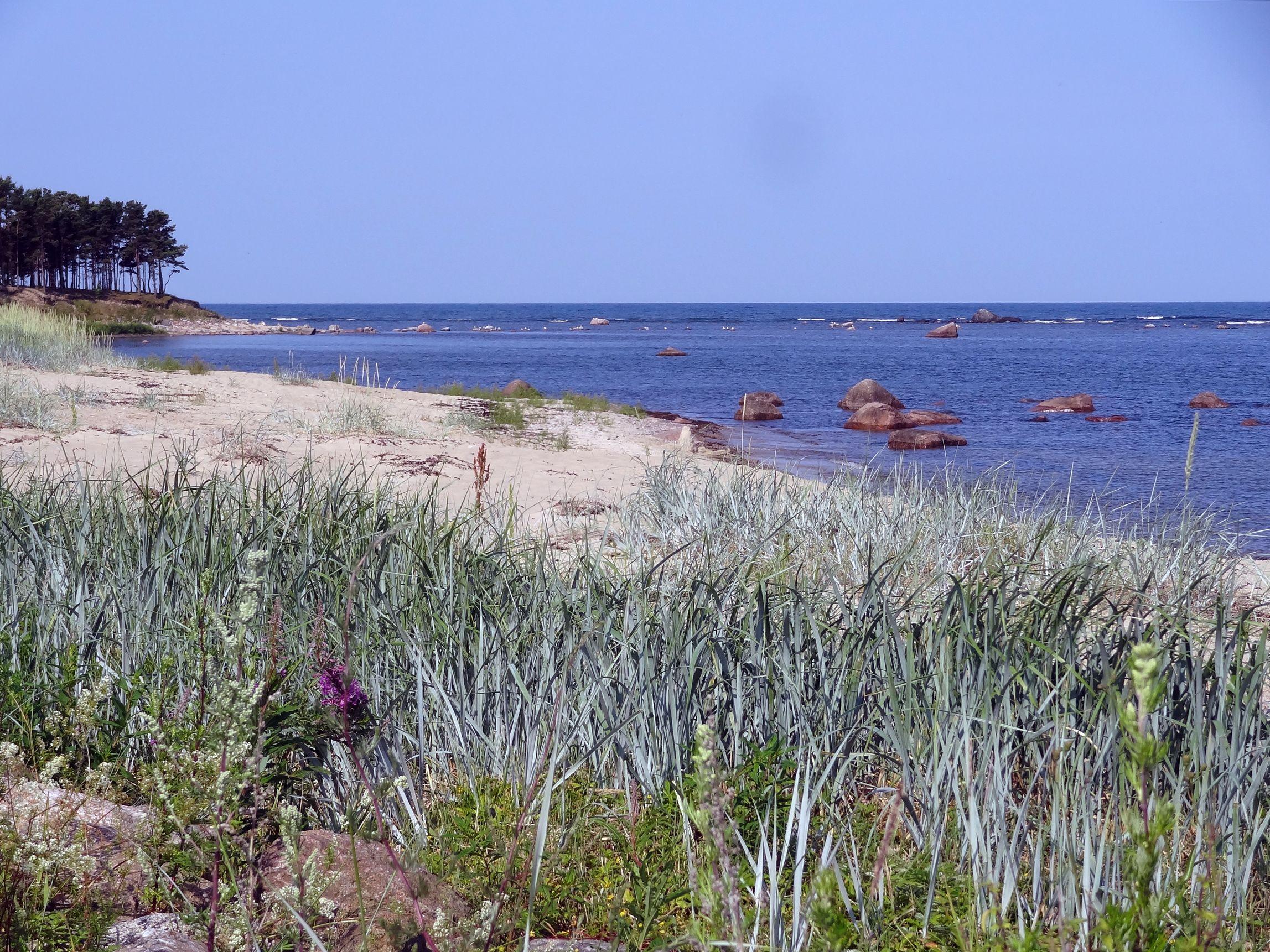Strand von Dirhami