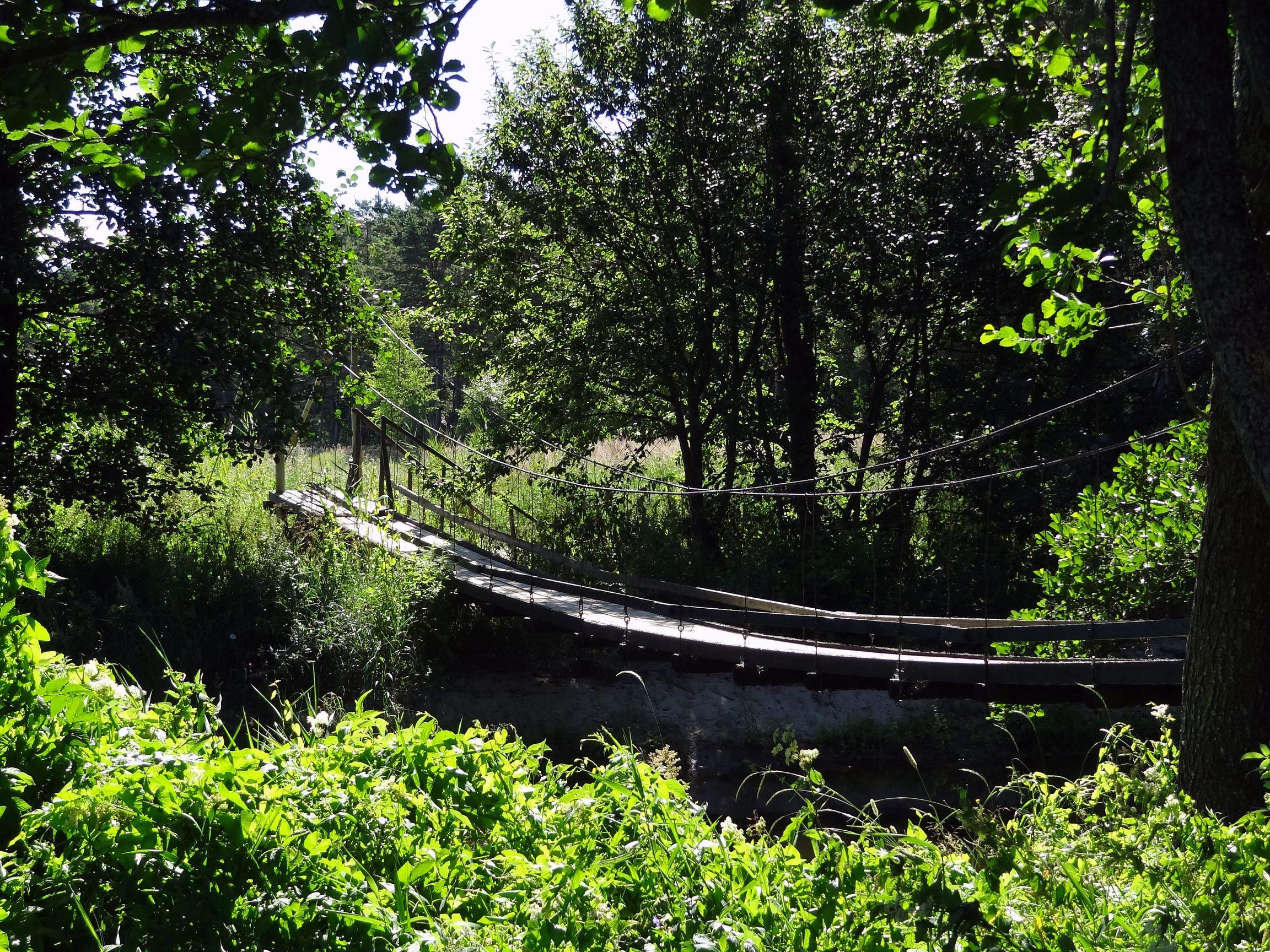 Hängebrücke in Altja