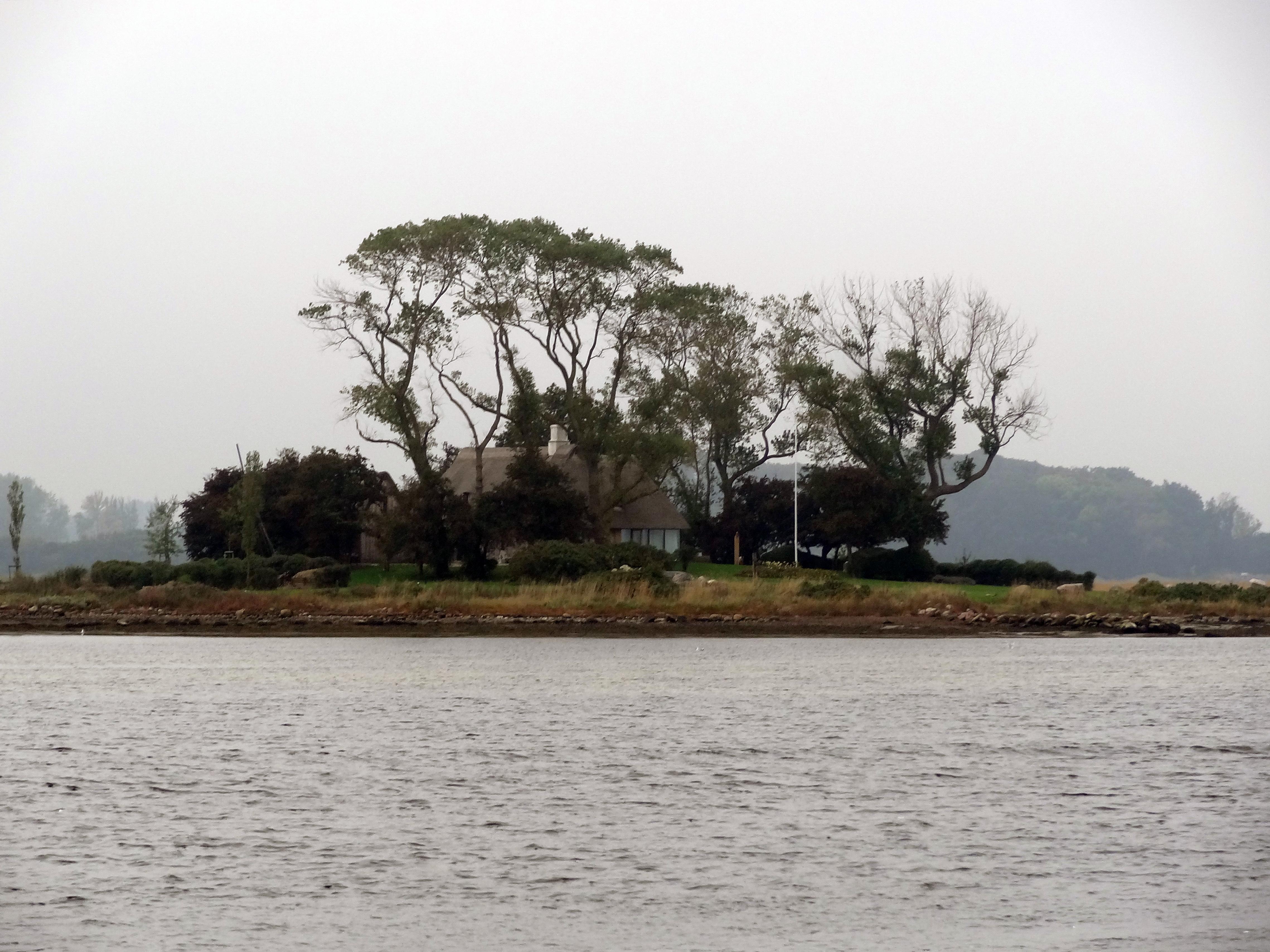 Insel in der Schlei