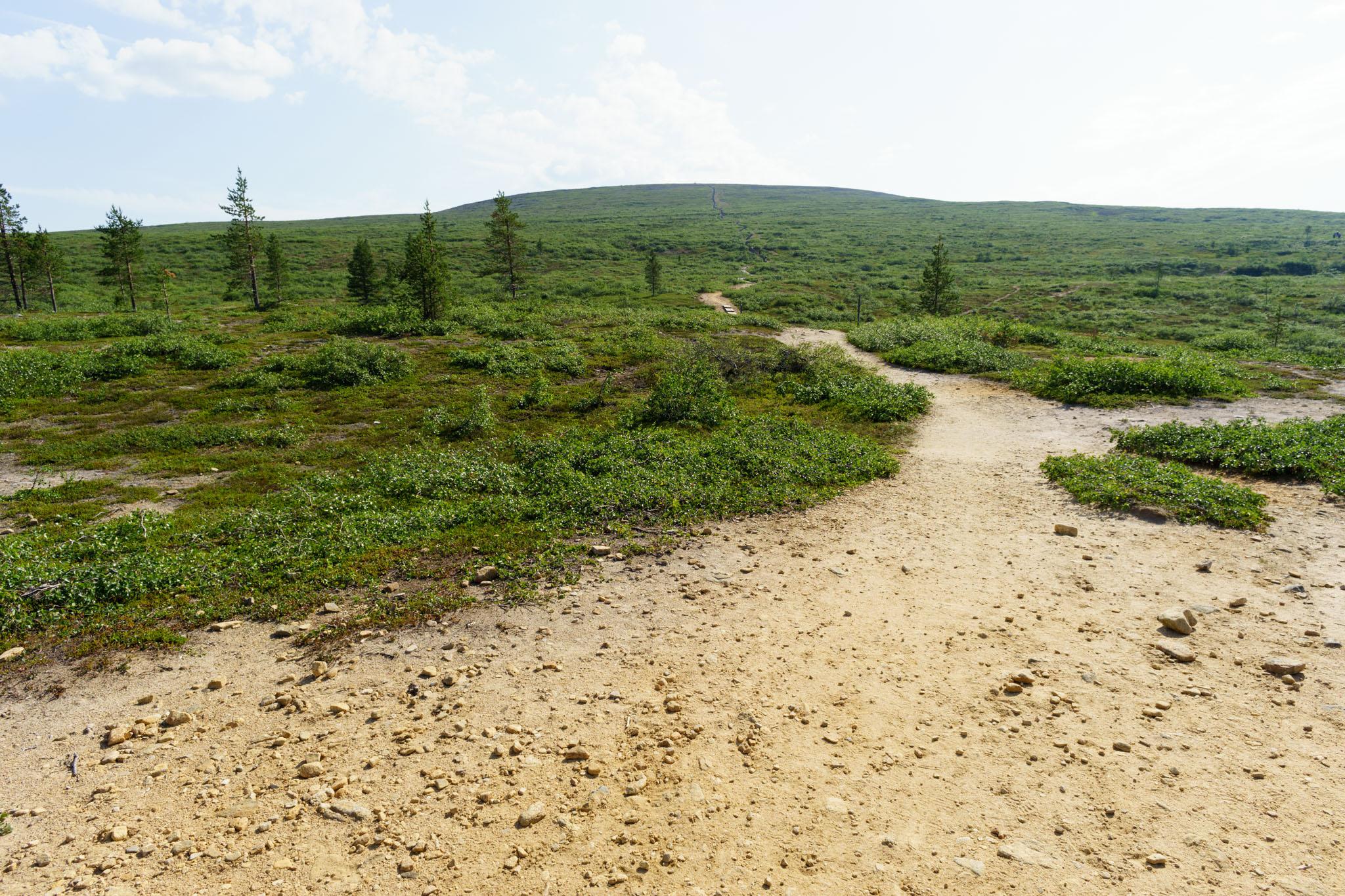 Wanderung zum Kiilopää