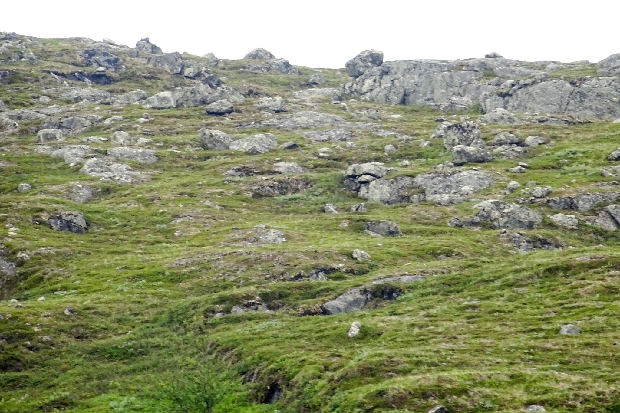 Schroffe Berge kurz vor der Grenze