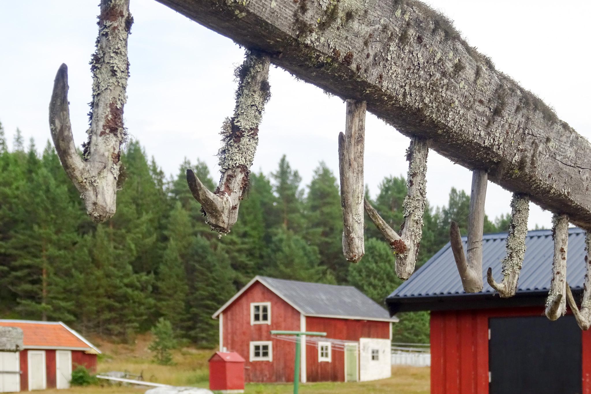 Hölzernes Trockengestell für Fische und Netze