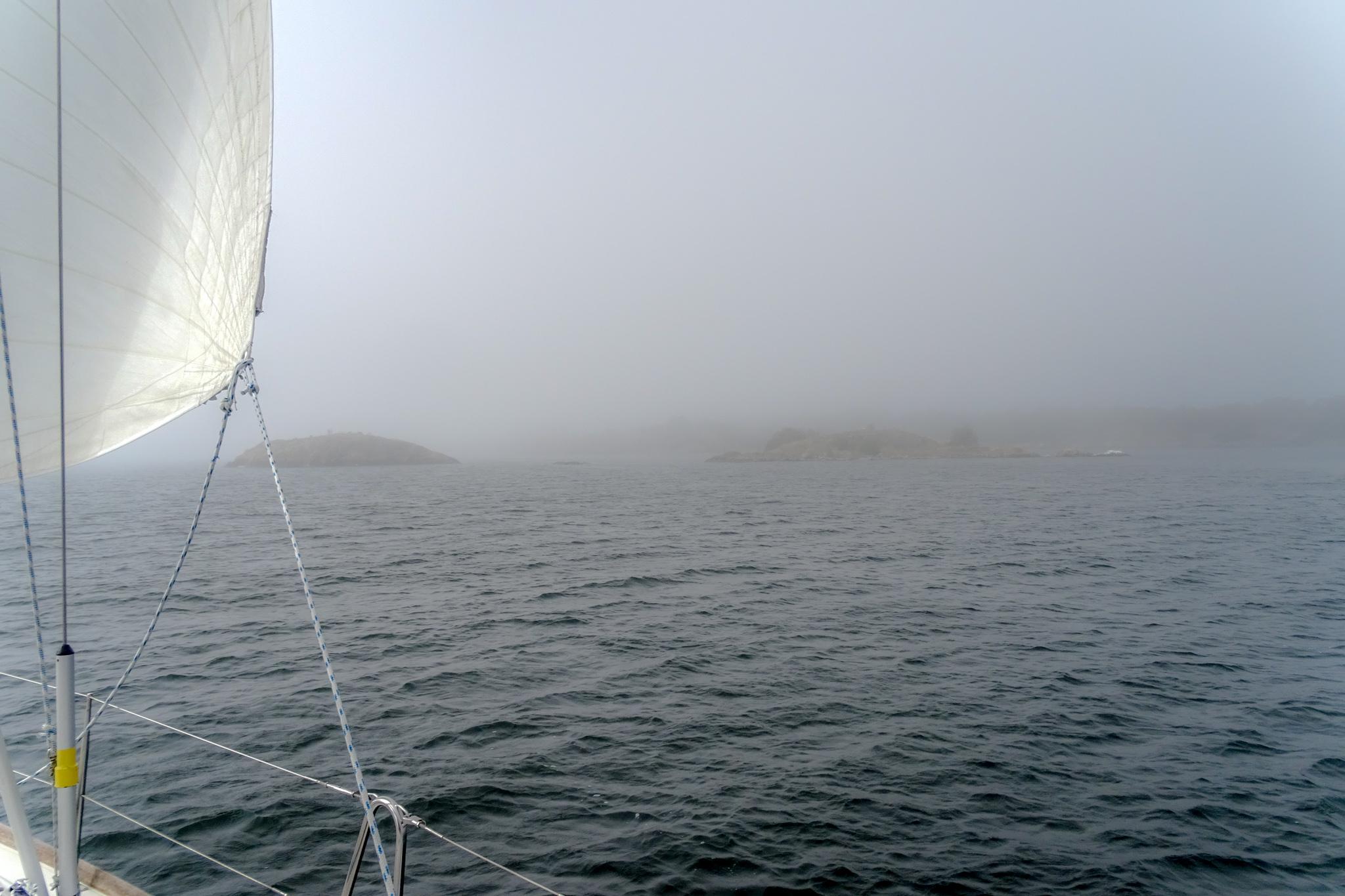 Nebel in den Schären