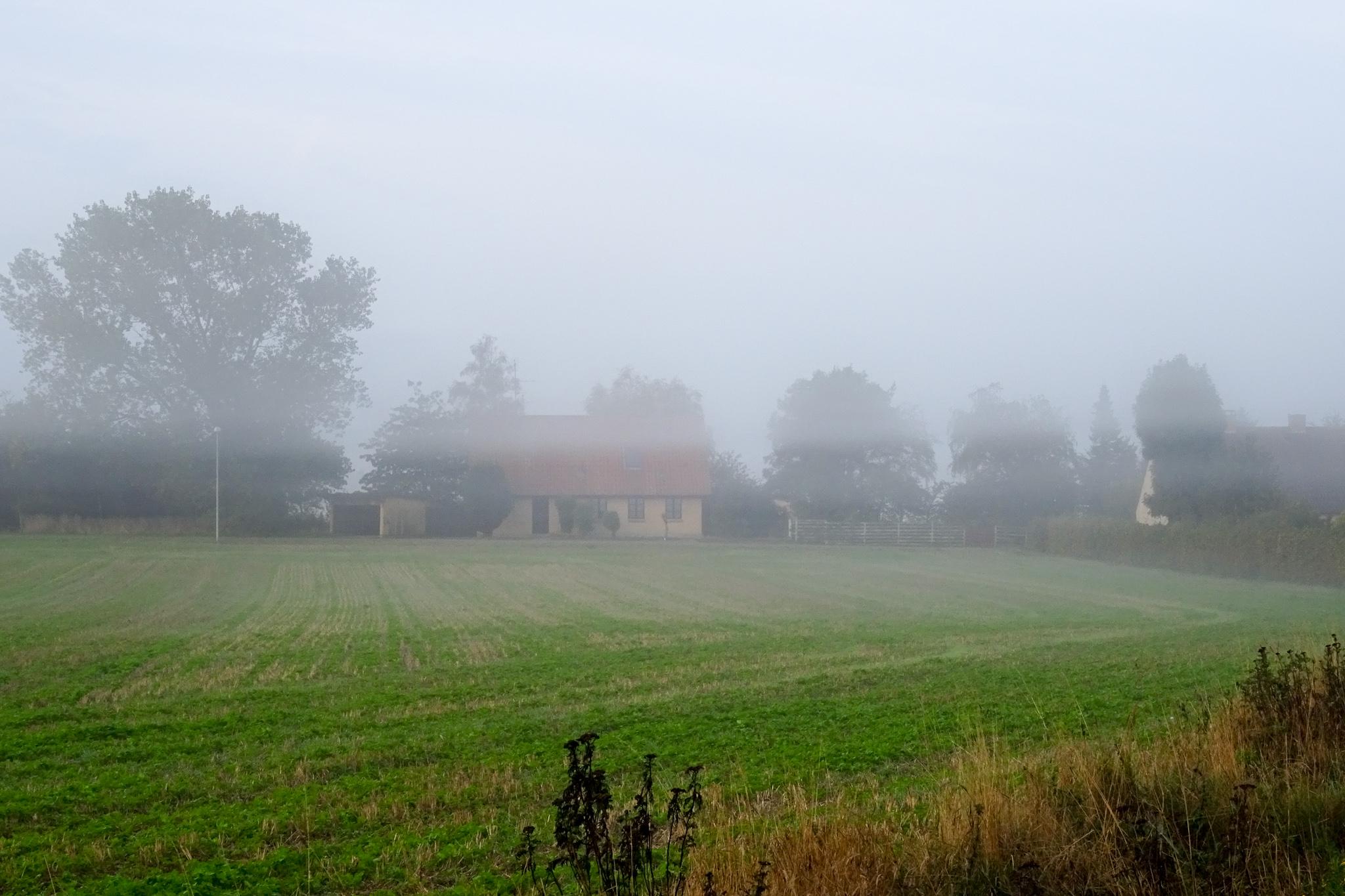 Gedser im Nebel 3