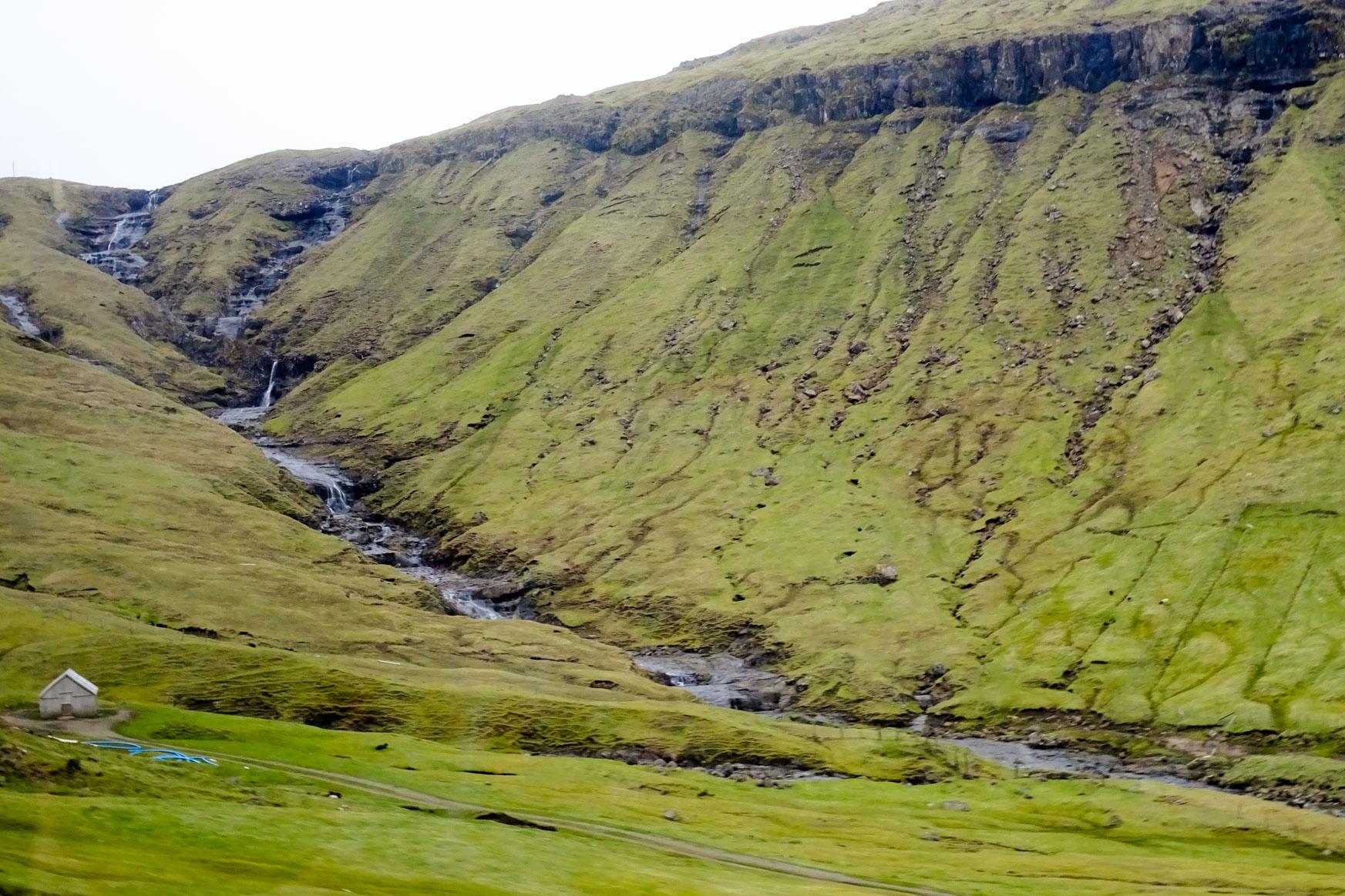 Grüne Färöer