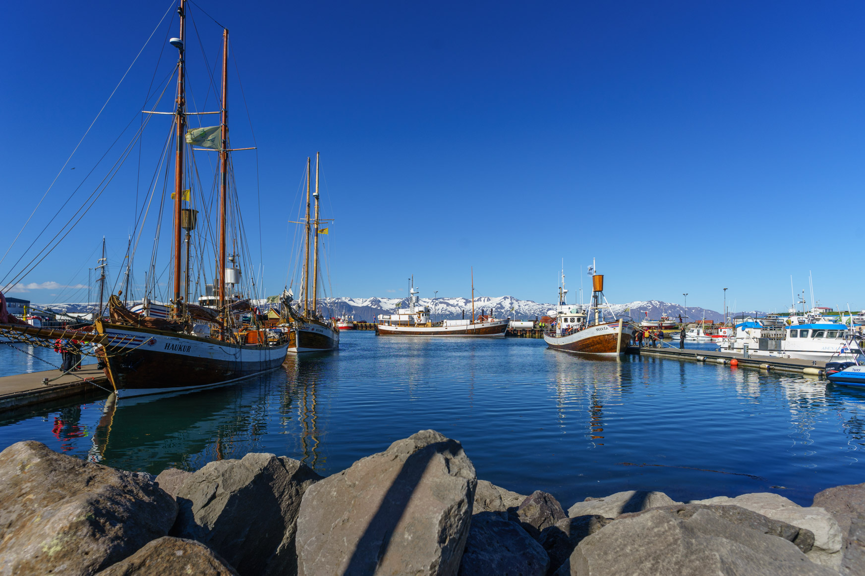 Whale-Watching-Boote