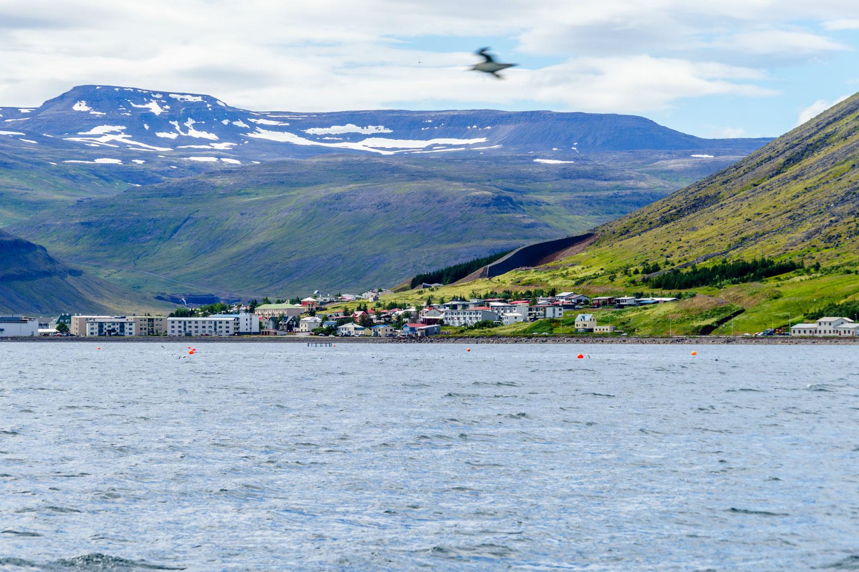 Isafjörður
