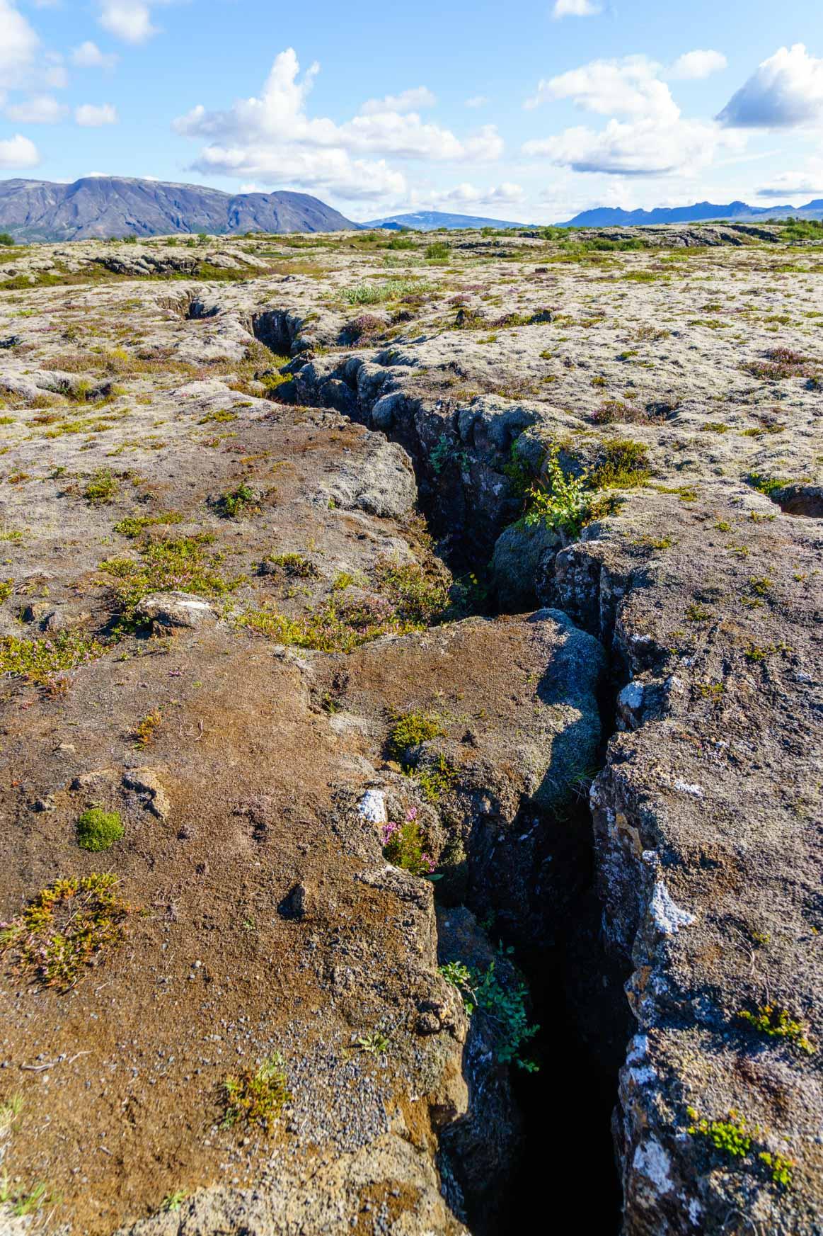 Schlucht in Þingvellir